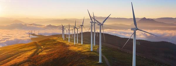 A wind farm)