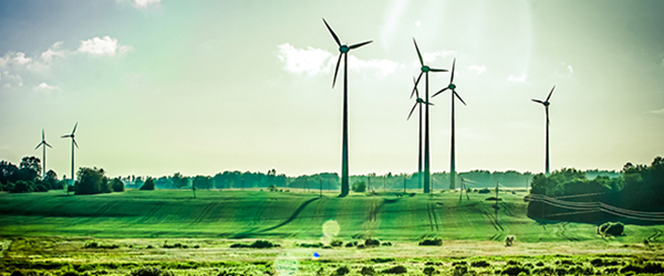 Windmills in a Green Field)