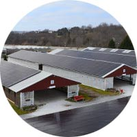 Solar panels on commercial bulidings